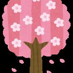 三島市在住の地元民がコッソリ教える、三嶋大社での桜見の見どころポイントとは?