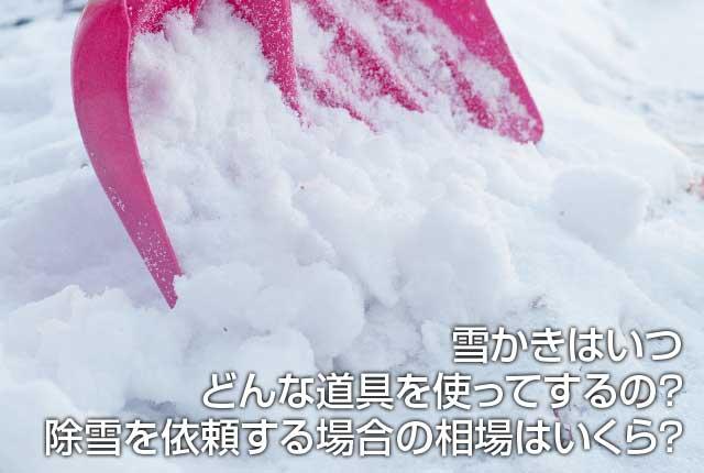 雪かきはいつどんな道具を使ってするの?