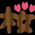 六義園(東京都文京区)の桜見は夜桜が最高?地元の人のみ知る穴場タイムは実は…