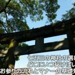 七五三の神社の選び方 どこにいつ行けばいい?お参りの流れとマナーの基礎知識!